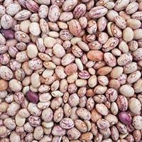 لوبیا چیتی خارجی (1کیلو)